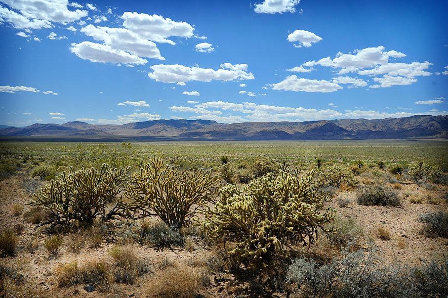 South Nevada